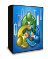 9 Forex Systems.pdf